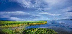 【舌尖上的若尔盖】花湖草原环线三日游